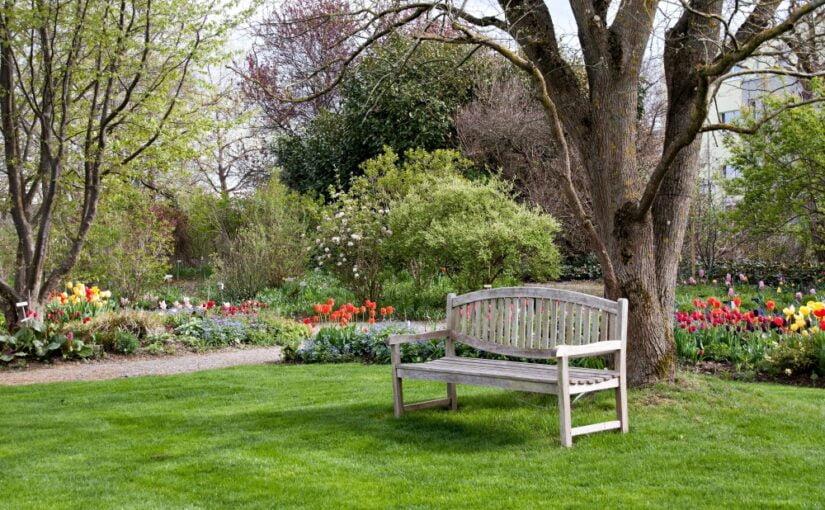 Bænk i en stor have